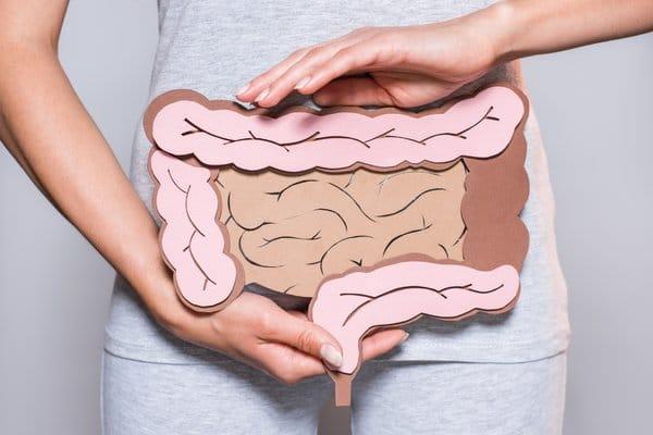 Colon or rectum of the body